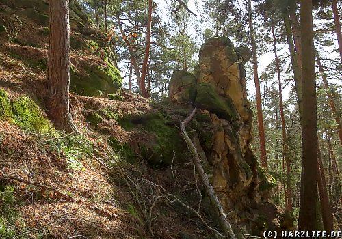 Osterholz - Kleiner Tyrstein
