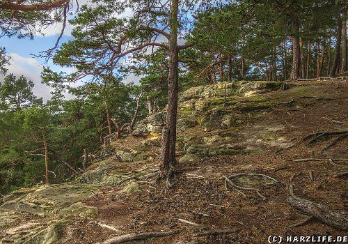 Osterholz - Der Tyrstein