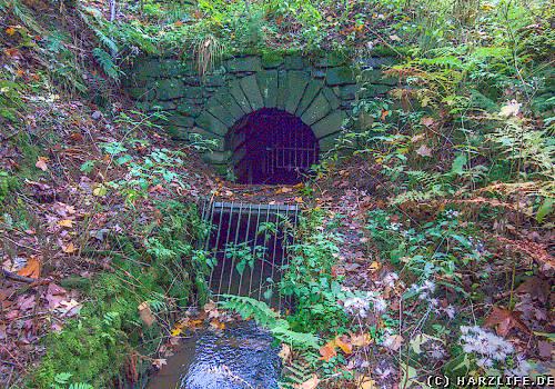 Der Untere Flambacher Wasserlauf
