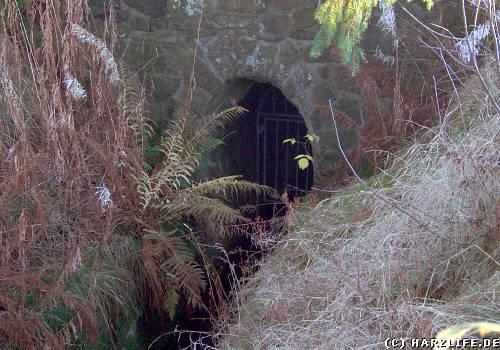 Der Ziegenberger Wasserlauf