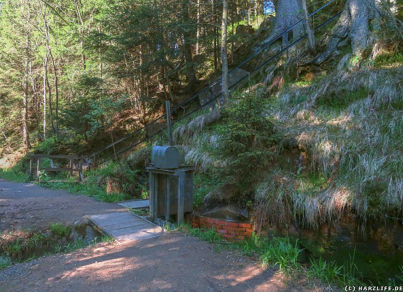 Die ersten Meter des Rehberger Grabens