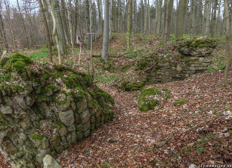 Überreste der Burgmauern der Erichsburg