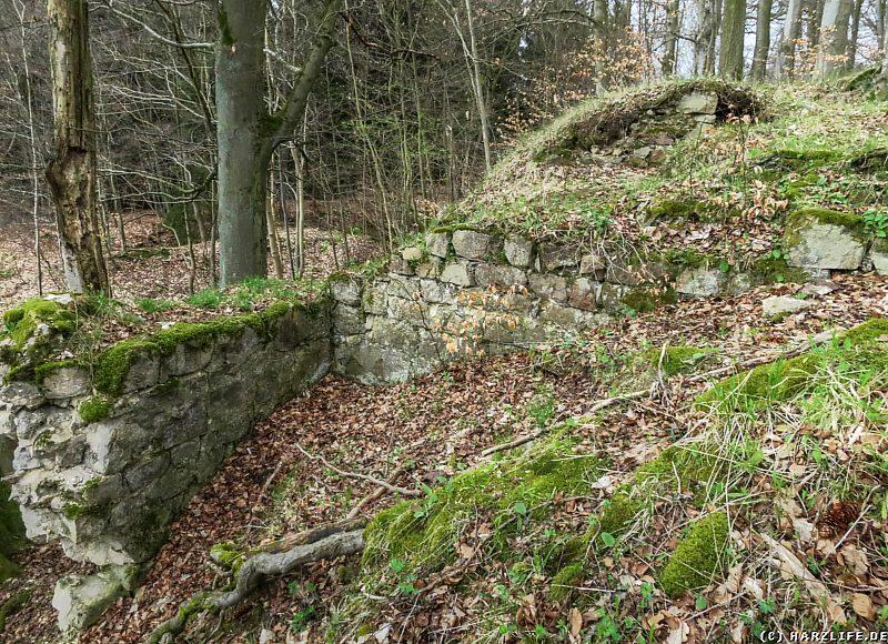 Reste des Mauerwerks der Erichsburg