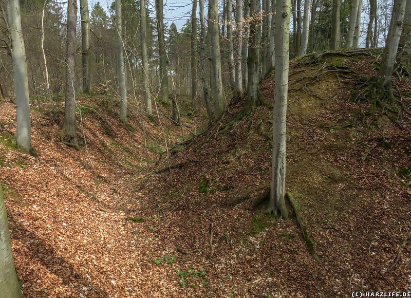 Reste der Wall-Graben-Anlage der Erichsburg