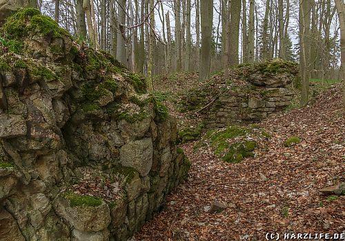 Burgruine Erichsburg