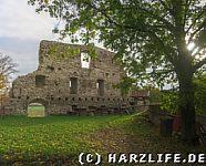 Burgruine Stapelburg Mauerrest