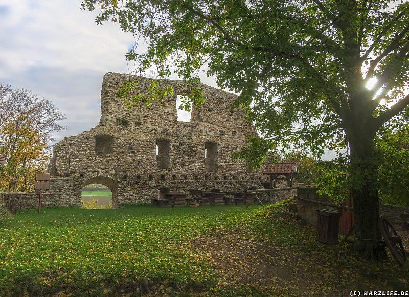 Auf dem Gelände der Burgruine Stapelburg