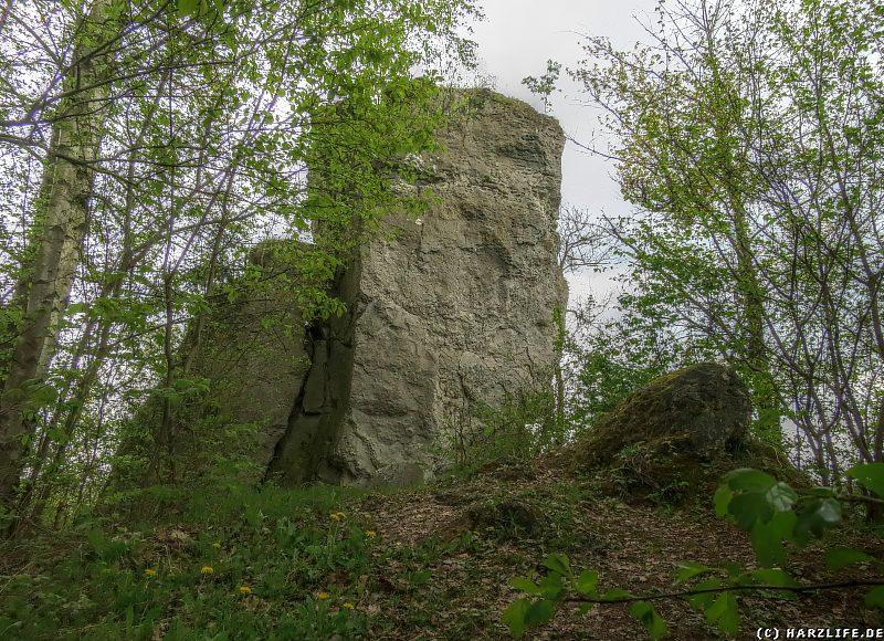 Ein markanter Dolomit-Felsblock auf dem Römerstein