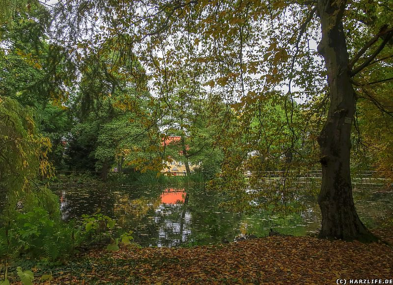 Schloßpark Bündheim mit Teich
