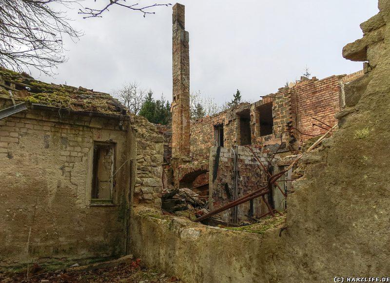 Blick in eine eingestürzte Ruine auf der Viktorshöhe