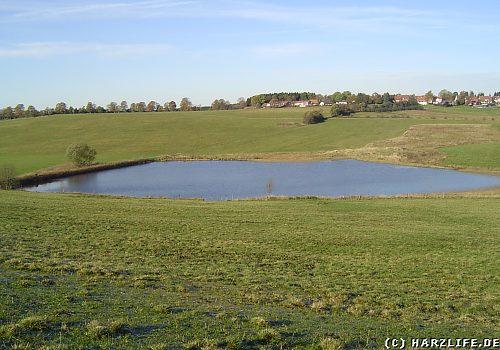 Der Alte Wasserläufer Teich