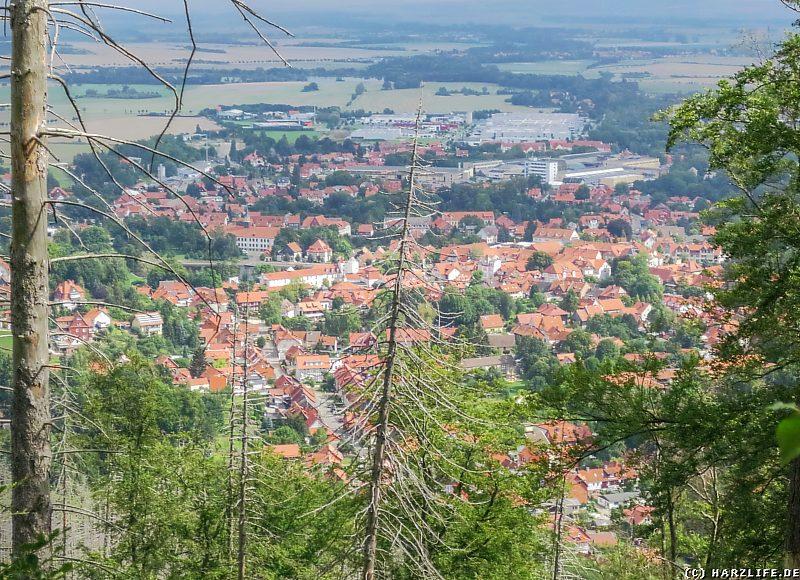 Aussicht vom Meineberg auf Ilsenburg und das nördliche Harzvorland