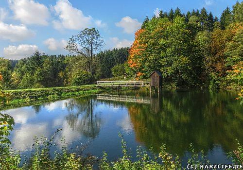 Der Carler Teich