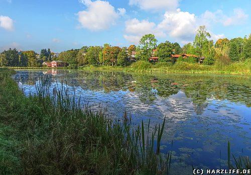 Der Eulenspiegler Teich