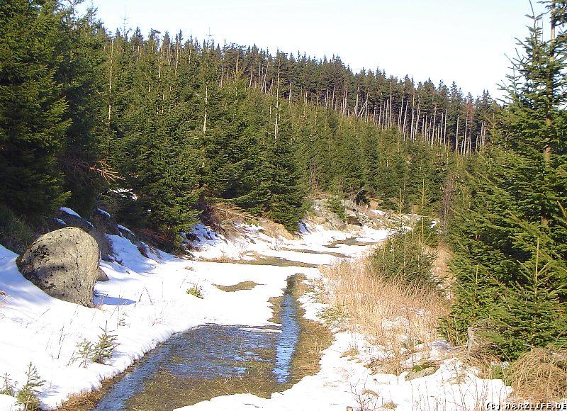 Der Forstmeister-Sietz-Weg im Winter