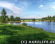 Badestrand am Ziegenberger Teich