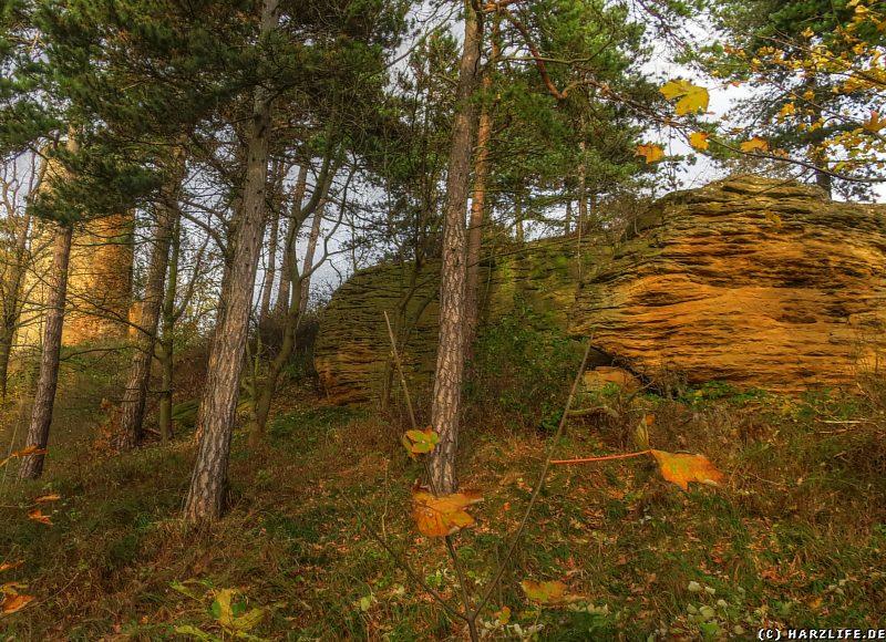 Die Sandsteinklippen auf dem Sudmerberg