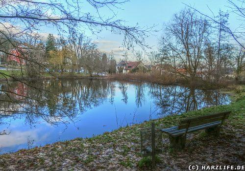 Der Frankenberger Teich