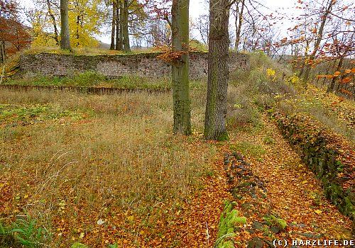 Burgruine Ilburg in Ilfeld