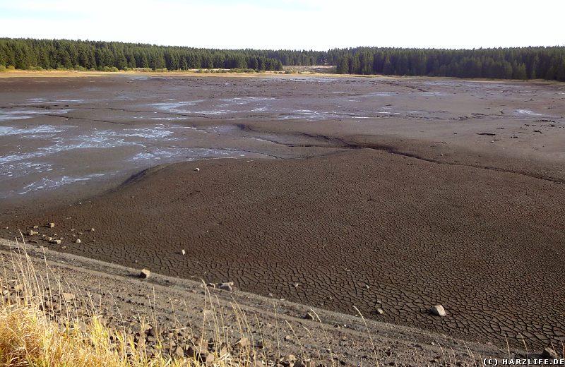 Der leere Hirschler Teich