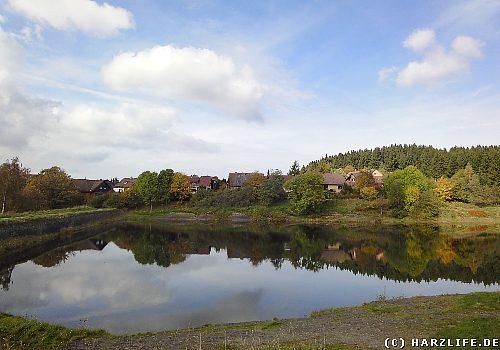 Der Obere Eschenbacher Teich