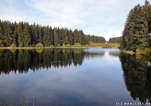 Der Untere Flambacher Teich