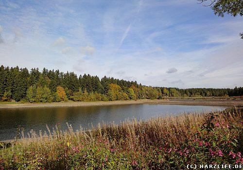 Der Untere Haus-Herzberger Teich in Clausthal-Zellerfeld im Harz