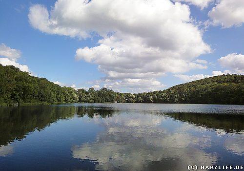 Der Vatteröder Teich