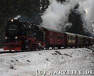 Harzquerbahn bei Drei Annen Hohne
