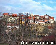 Blick zum Münzenberg