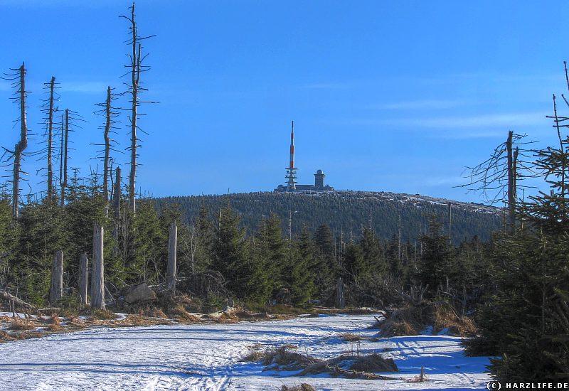 Winter im Harz - Blick zum Brockenblick - Goetheweg am Quitschenberg