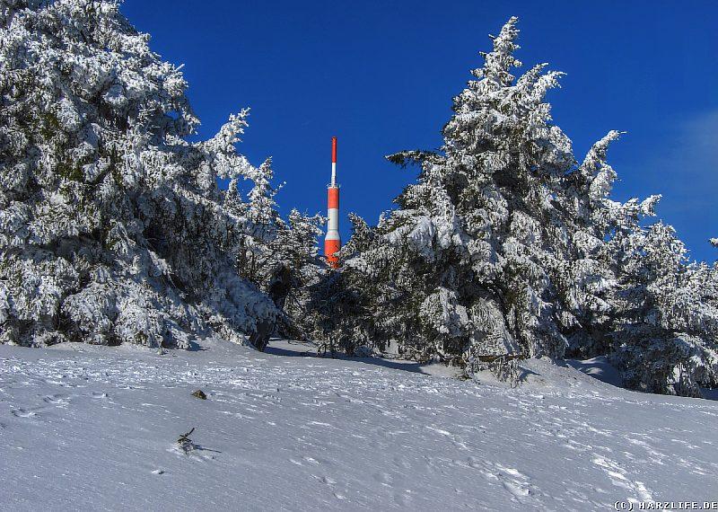 Oberharzer Winterwald unterhalb des Brockengipfels
