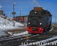 Die Brockenbahn auf dem Brockenbahnhof
