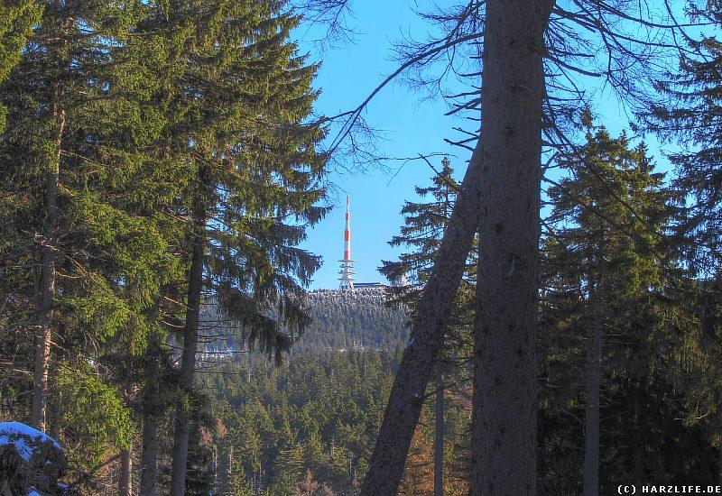 Brockenblick vom Goetheweg