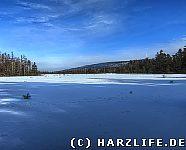Das Grosse Torfhausmoor im Winter
