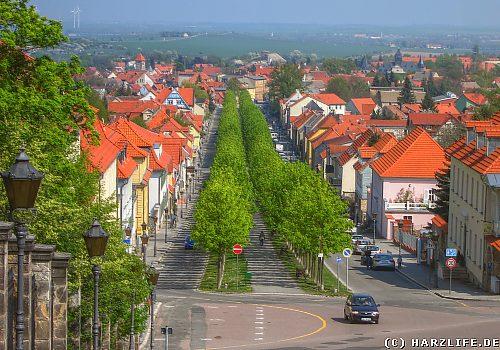 Blick auf Ballenstedt