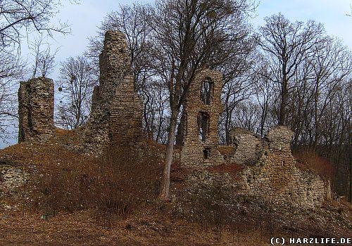 Die Burgruine Stecklenburg