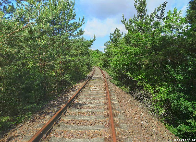 Der Eisenbahndamm unterhalb der Kuxburg