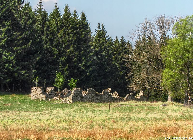 Grundmauern - Viehhof und Hirtenhaus