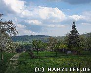 Landschaft bei Timmenrode