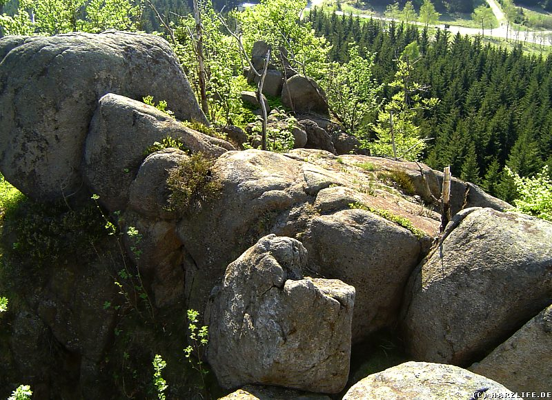 Auf der Scharfenstein-Klippe