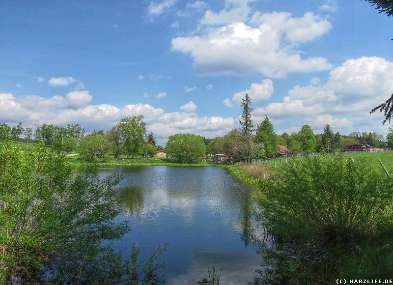 Blick über den Dorfteich auf Sophienhof