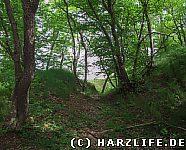 Reste einer Wall-Graben-Anlage