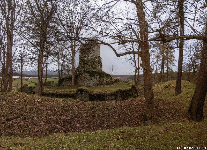 Gesamtansicht der Burganlage mit Wall-Graben-System