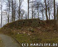 Ruinen der Burg Elbingerode