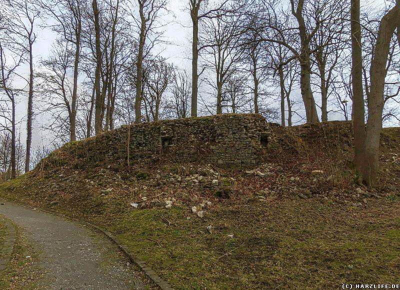 Ruinen der Burg Elbingerode auf dem Gelände des Schloßparks