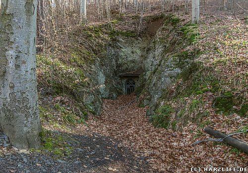 Die Erzgrube König Friedrich