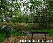 Am Großen Teich