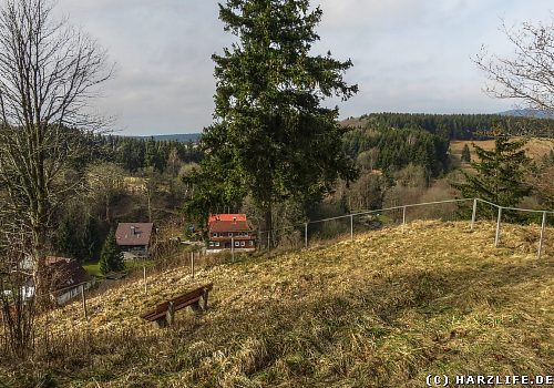 Das Naturschutzgebiet Bockberg