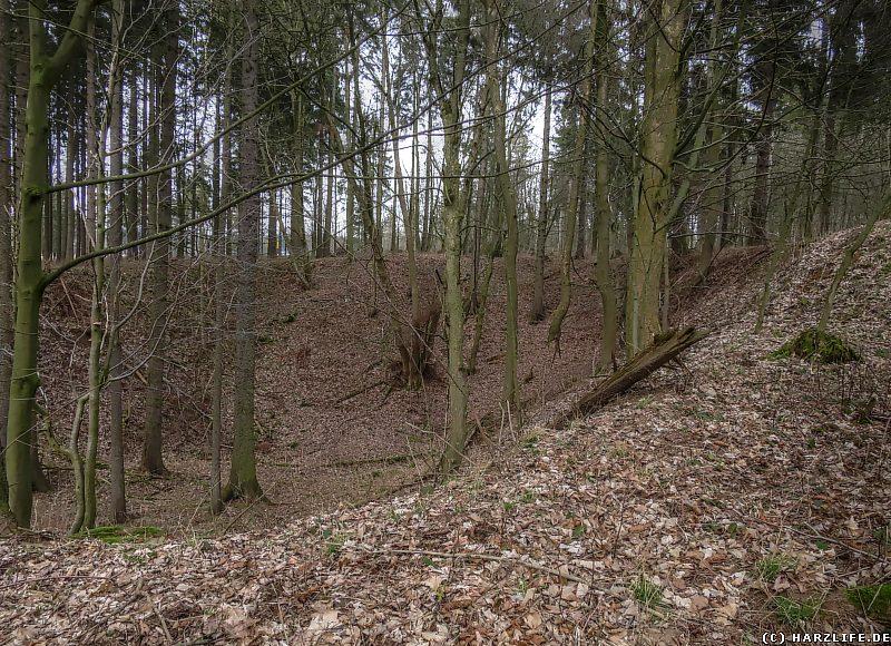 Pinge des Altbergbaus am Büchenberg-Sattel